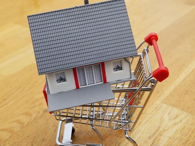 koupě domu, dům, nákupní vozík